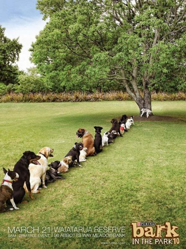 Purina-Bark-in-the-Park-Tree
