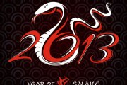 2013-Year-of-the-Snake-design-3