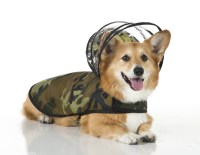 Pampered pooches get raincoats with detachable hoods ...