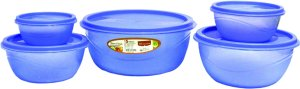 princeware-store-fresh-plastic-bowl-package-container-set-of-5-blue-rs-99-only-amazon