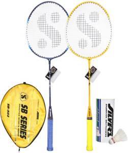 Flipkart - Buy Silver's SB-503 Badminton Kit at Rs 331 only