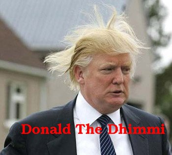 donaldtrumphairblowing