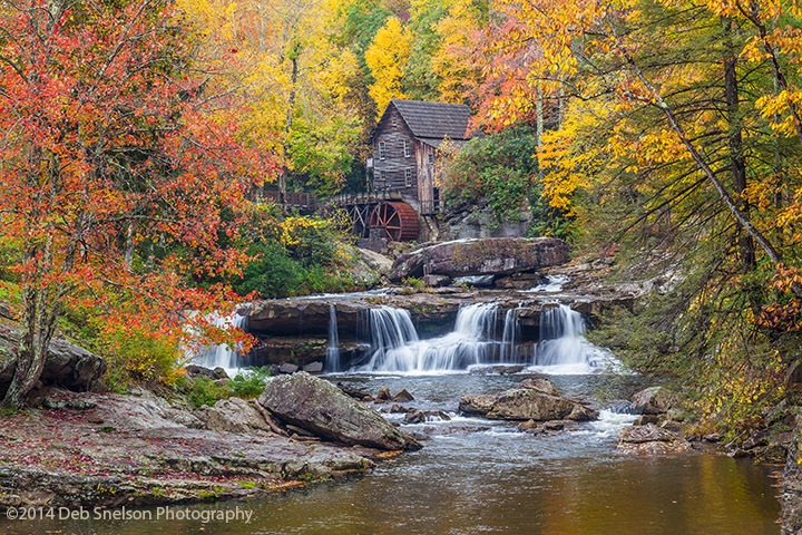 Central Park In Fall Wallpaper New River Gorge Wv