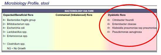 DD_Microbiology5