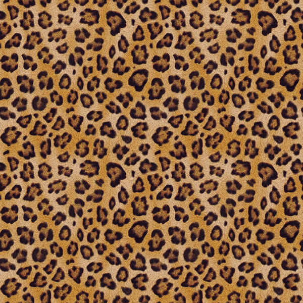 Glass Wallpaper Hd Leopard Spots By Decalgirl Collective Decalgirl
