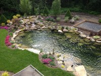 Ponds For Backyard