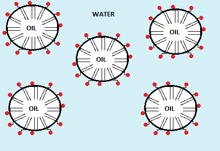 Oil-in-Water Emulsion with a phospholipid interface
