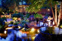 Your Backyard with Paradise Lightings   Decohoms