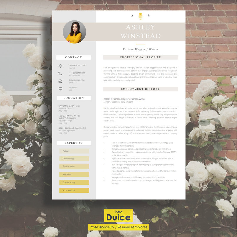 50+ Best Clean  Useful CV / Resume Templates DecoloreNet
