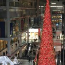 100 ft tree at Eaton Centre