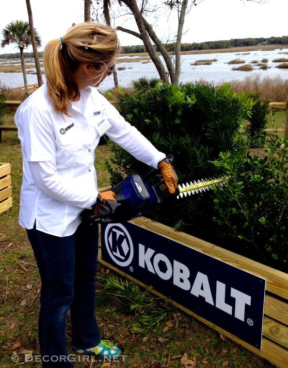 Lisa and Kobalt trimmer