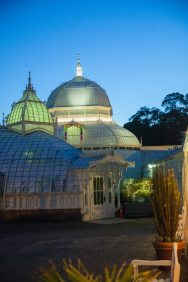 Conservatory of Flowers Wedding