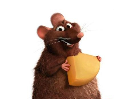 ratos_dd