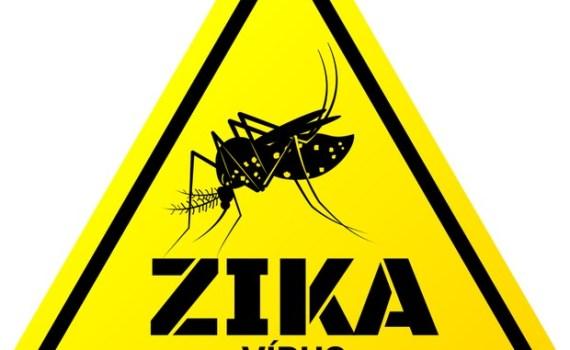 zikavirus_dedeflasch