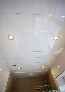Need to create a low maintenance waterproof ceiling for any bathroom