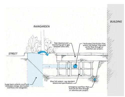 Raingarden schematic DeepRoot Blog