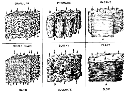 soil layers diagram