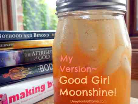 My Version ~ Good Girl Moonshine!, ginger, cinnamon, ACV, hydrant, stay hydrated, feel full, between meals, trend, water bottle, favorite drink, good habit, less hungry, satisfied, mental focus, alert, Pearl and Serene, work with body, hormone balance, weight management, natural, Trim Healthy Mama, book, comforting, sipper, spicy, sweet tart, flavor, raw honey, live enzymes, nutrients, workout drink, Gatorade alternative, electrolytes, Celtic sea salt, Himalayan salt, THM, trace minerals, detox, lemon juice, health benefits, increase metabolism, weight loss, anti-inflammatory, morning sickness, alkaline, immune stimulant, anti-viral, antibacterial, antifungal, fights colds, improves circulation, Type 1 diabetes, Type 2 diabetes, reduce blood sugar levels, reduce blood pressure,