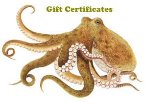 octopus_gift
