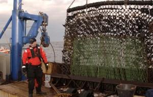 CGC Northland fishery boarding