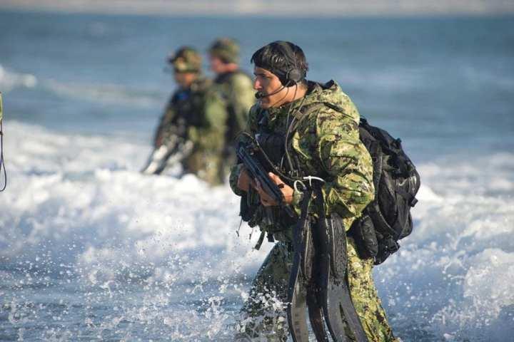SEALs beach