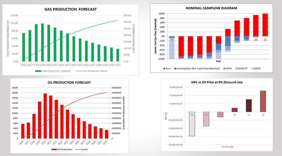 Our Services - Economic Modeling  Risk Analysis