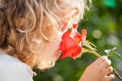 ¿Qué perfumes tendremos esta Primavera?