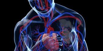 Por-qué-da-taquicardia-2