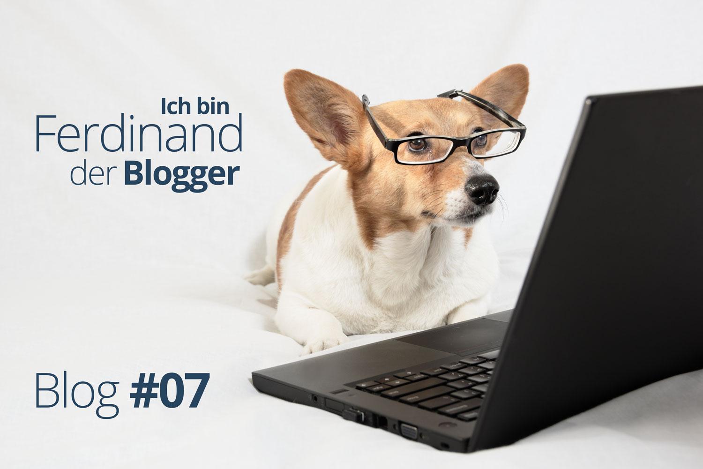 Ferdinand der Blogger – Ein Hund packt aus #07 –
