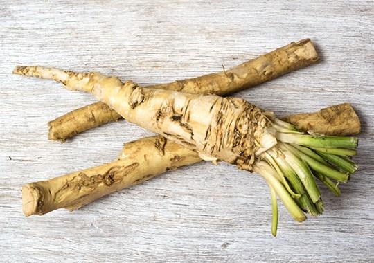 Chopped Canada Season 3, Episode 17: Fresh Horseradish? Elk Ribeye?