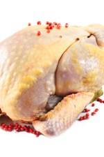 Chopped Canada, Season 3, Episode 18: Asparagus Stuffed Guinea Fowl