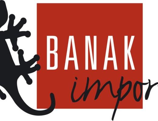logo Banak Importa