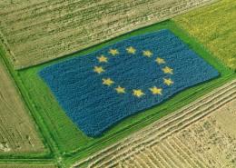 bonus-e-commerce-agricoltura