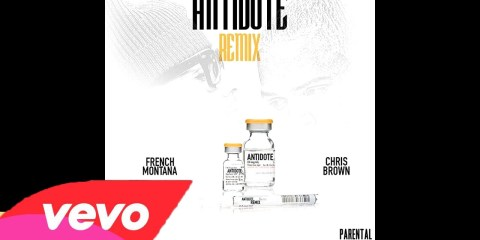 Chris Brown ft. French Montana - Antidote