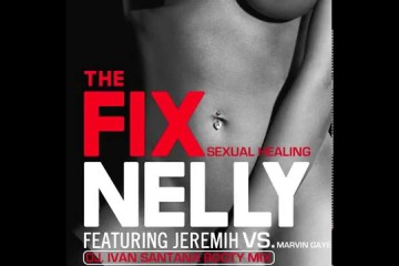 Nelly - The Fix
