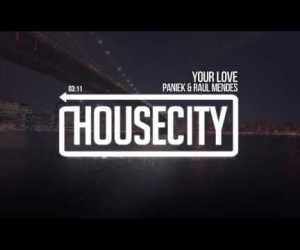 Paniek & Raul Mendes - Your Love