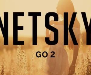 netsky-go-2