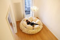The Giant Birdnest: A Cozy Wooden Bed Filled With Egg ...