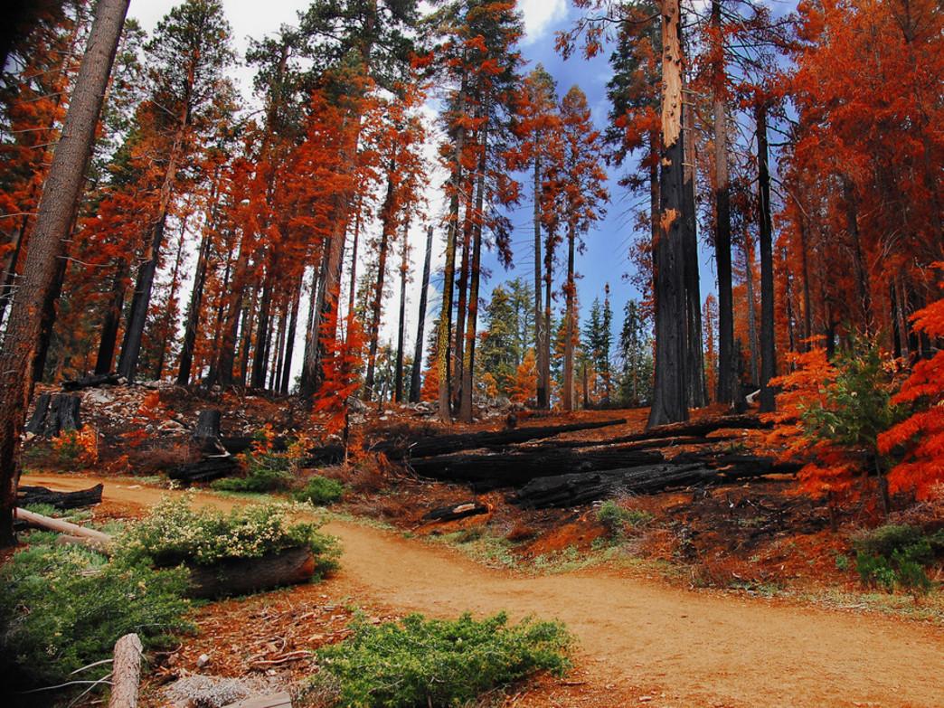 Fall Harvest Wallpaper Hd 15 Photos Qui Vont Vous Donner Envie De Visiter Le Sublime