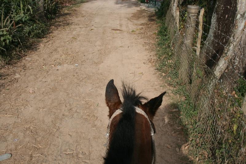 Adeline à cheval