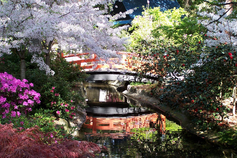 Serene Wallpapers Large Fall Japanese Garden Descanso Gardens Guild