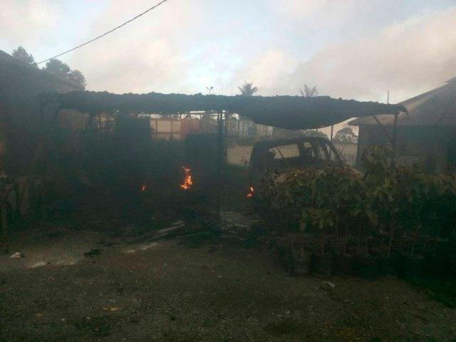 inparques colonia tovar patio quemado