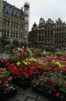 Flores en el Ayuntamiento de Bruselas.