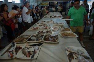 La lonja del pescado en El Campello.