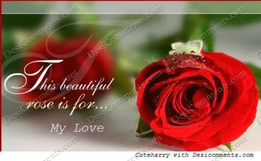 Mom Wallpapers Quotes In Hindi Beautiful Rose For My Love Desicomments Com
