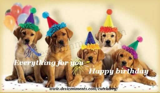 Cute Wallpapers With Quotes Hindi Happy Birthday Desicomments Com