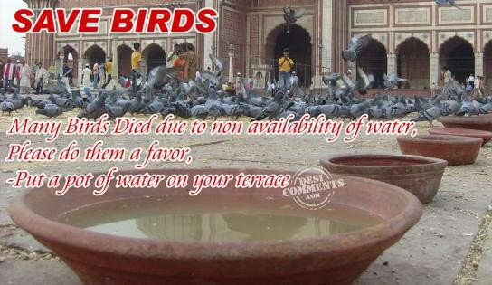 Sad Wallpapers With Quotes Hindi Save Birds Desicomments Com