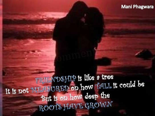 Meaningful Love Quotes Wallpapers Friendship Is Like A Tree Desicomments Com