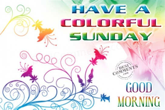 Gud Morning Wallpaper With Quotes In Hindi Have A Colorful Sunday Desicomments Com