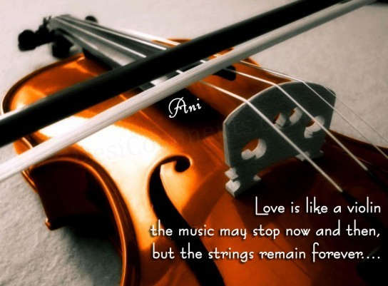 Musical Birthday Quotes Wallpapers Love Is Like A Violin Desicomments Com